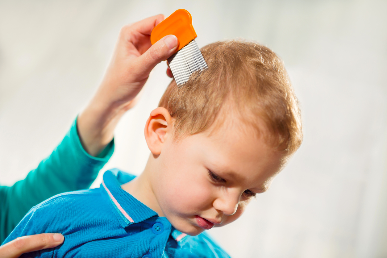 My Kid Has Lice!  Now What?