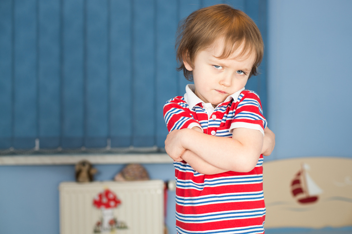 Toddler Terrible Twos: My Child Says No All The Time
