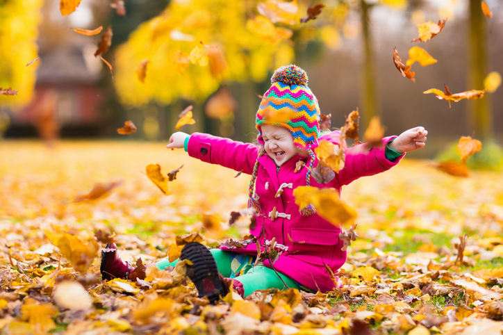 35 Fun Fall Activities For The Whole Family!